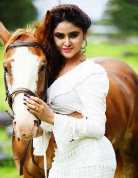 Sony Charishta Hot Photoshoot with Horse