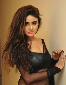 Sony Charishta in Black Saree at Khwaaish Designer Exhibition Launch