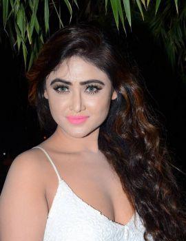Sony Charishta Stills at Nanna Nenu Naa Boyfriends Audio Launch