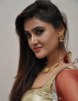 Sony Charishta Stills at Seenugadi Love Story Audio Release