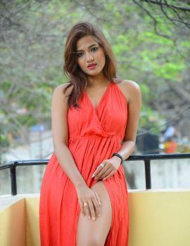 Sravani Nikki Stills at Life Anubhavinchu Raja Movie Press Meet