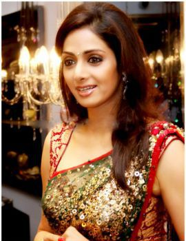 Bollywood Actress Sri Devi in Saree