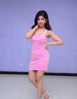Srijita Ghosh Photos at Shukra Movie Vote Of Thanks Meet