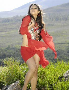 Actress Tanisha Mukherjee Hot Stills