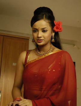 Telugu Actress Tanu Roy Stills in Red Saree