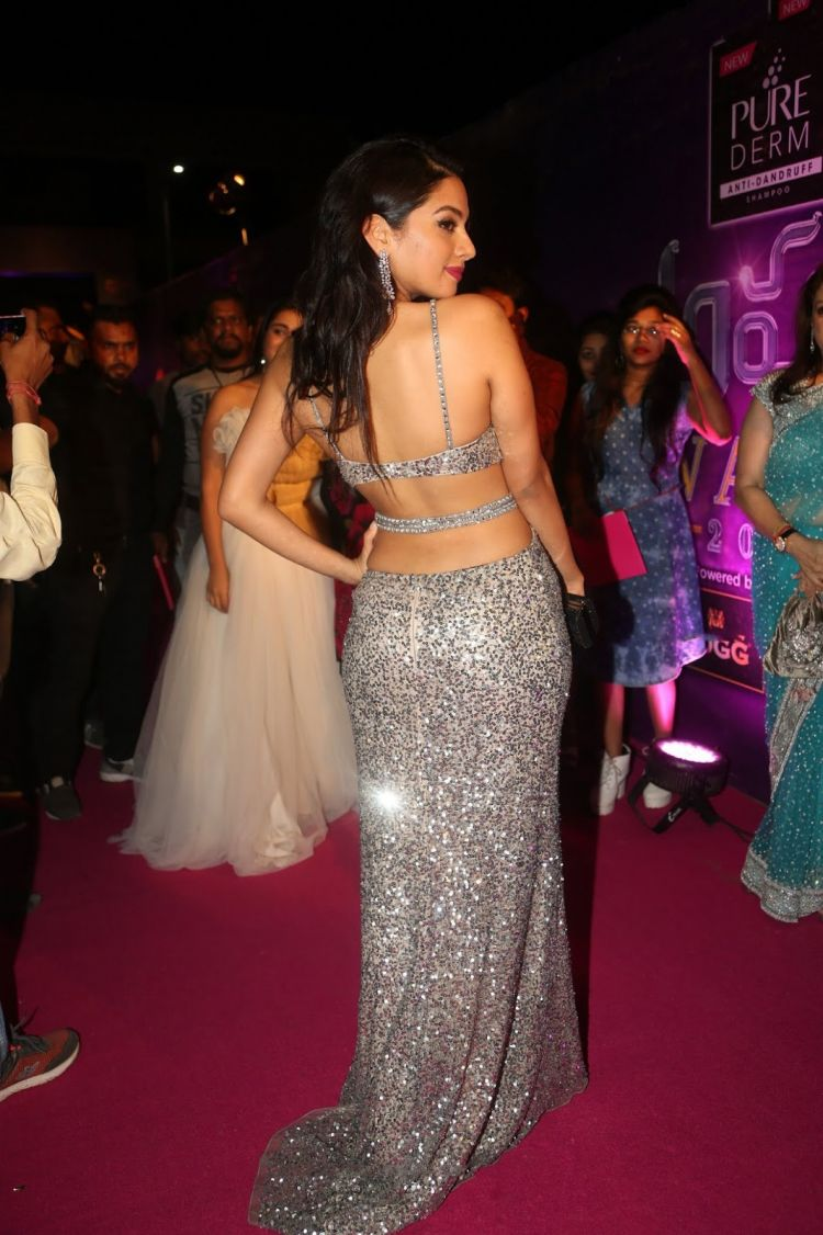 Actress Tanya Hope at Zee Apsara Awards 2018 Red Carpet