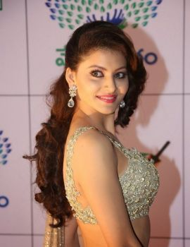 Urvashi Rautela in Designer Saree at Memu Saitam Dinner with Stars Red Carpet