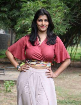 Varalaxmi Sarathkumar at Sathya Movie Success Meet