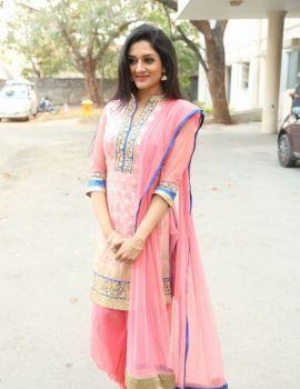 Vimala Raman at Om Namo Venkatesaya Movie Press Meet