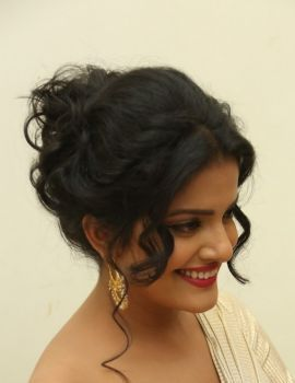 Vishakha Singh Stills at Rowdy Fellow Audio Launch