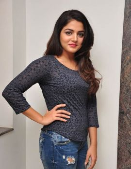 Wamiqa Gabbi at Nannu Vadili Neevu Polevule Press Meet