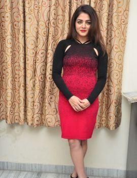 Wamiqa Gabbi Photos at Bhale Manchi Roju Press Meet
