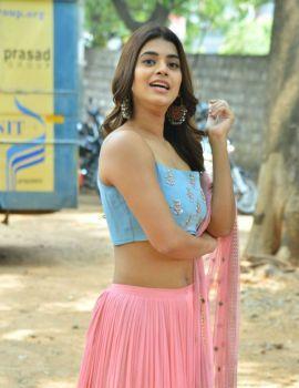Yamini Bhaskar Stills at Bhale Manchi Chowka Beram Movie Success Meet